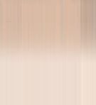 Fishing Charters Starting from $99 Call Now 954-943-8222