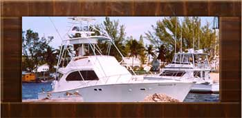 Intoxication III Fishing Charter